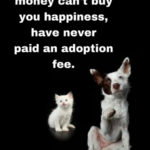 Animal Rescue Quotes And Poems Tumblr