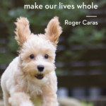 Animal Sayings And Quotes Twitter