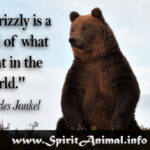 Bear Animal Quotes Tumblr