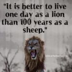 Better To Be A Lion For A Day Pinterest