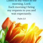 Biblical Good Morning Messages