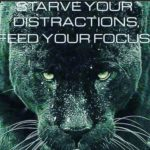 Black Jaguar Quotes Facebook