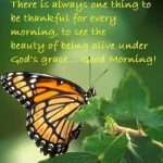 Butterfly Good Morning Quote