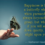 Butterfly Motivational Quotes Twitter