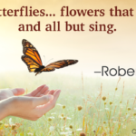 Butterfly Positive Quotes Twitter