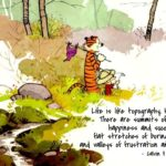 Calvin And Hobbes Inspirational Quotes Facebook