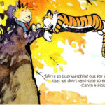 Calvin And Hobbes Quotes
