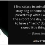 Candy And His Dog Quotes Pinterest