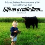 Cattle Farmer Quotes