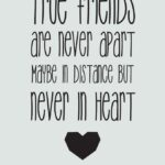 Cool Friendship Quotes