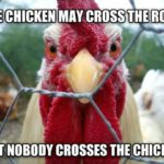 Cute Chicken Quotes