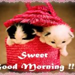 Cute Gud Mrng Images Twitter