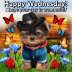 Cute Wednesday Quotes Facebook