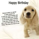 Dog Birthday Quotes