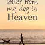 Dog Heaven Quotes Twitter