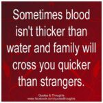 Family Isnt Always Blood Quotes Tumblr