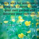 Famous Quotes About Flowers