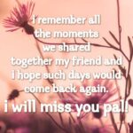 Farewell Message To A Special Friend Tumblr