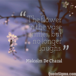 Smile Quote with Flowers Image