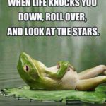 Frog Quotes And Images