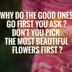 God Picks The Prettiest Flowers First Quote