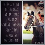 Good Luck Sayings Horse Racing Pinterest