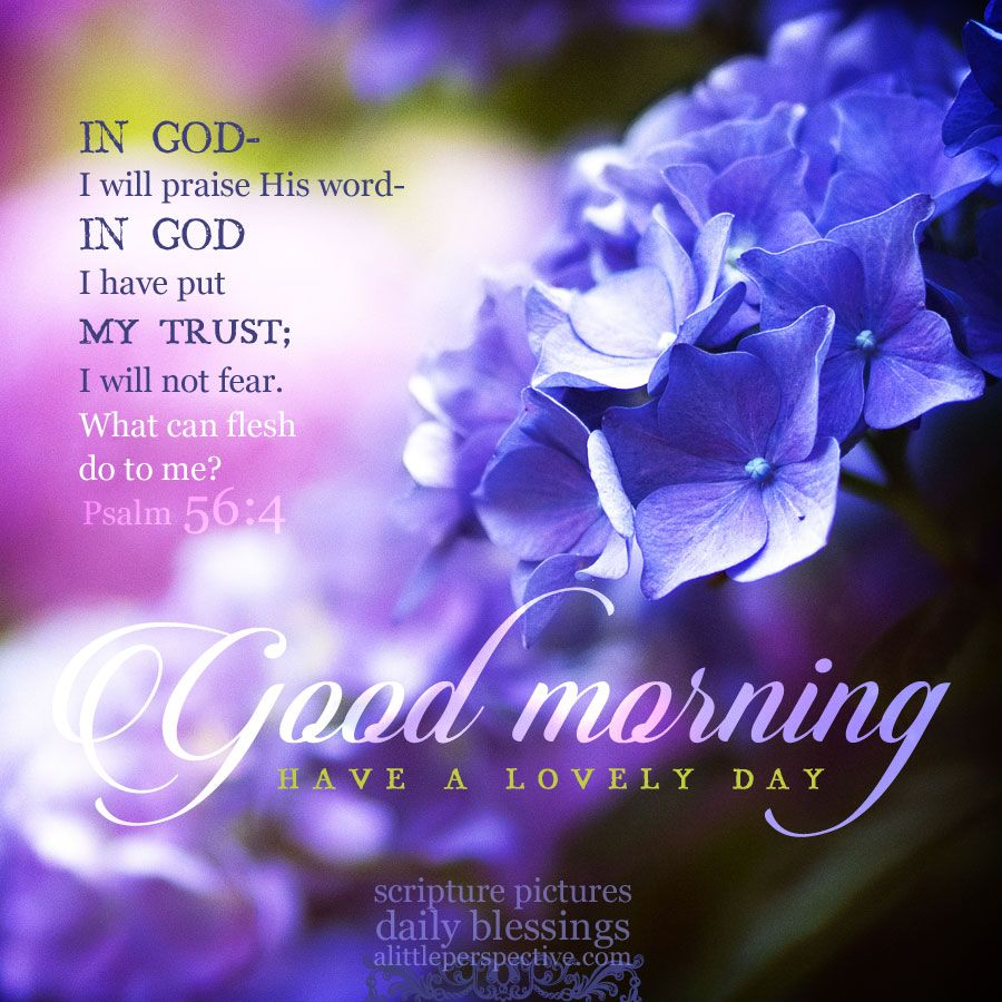 Good Morning Bible Quotes With Images – VisitQuotes
