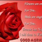 Good Morning Quotes With Rose Images Tumblr
