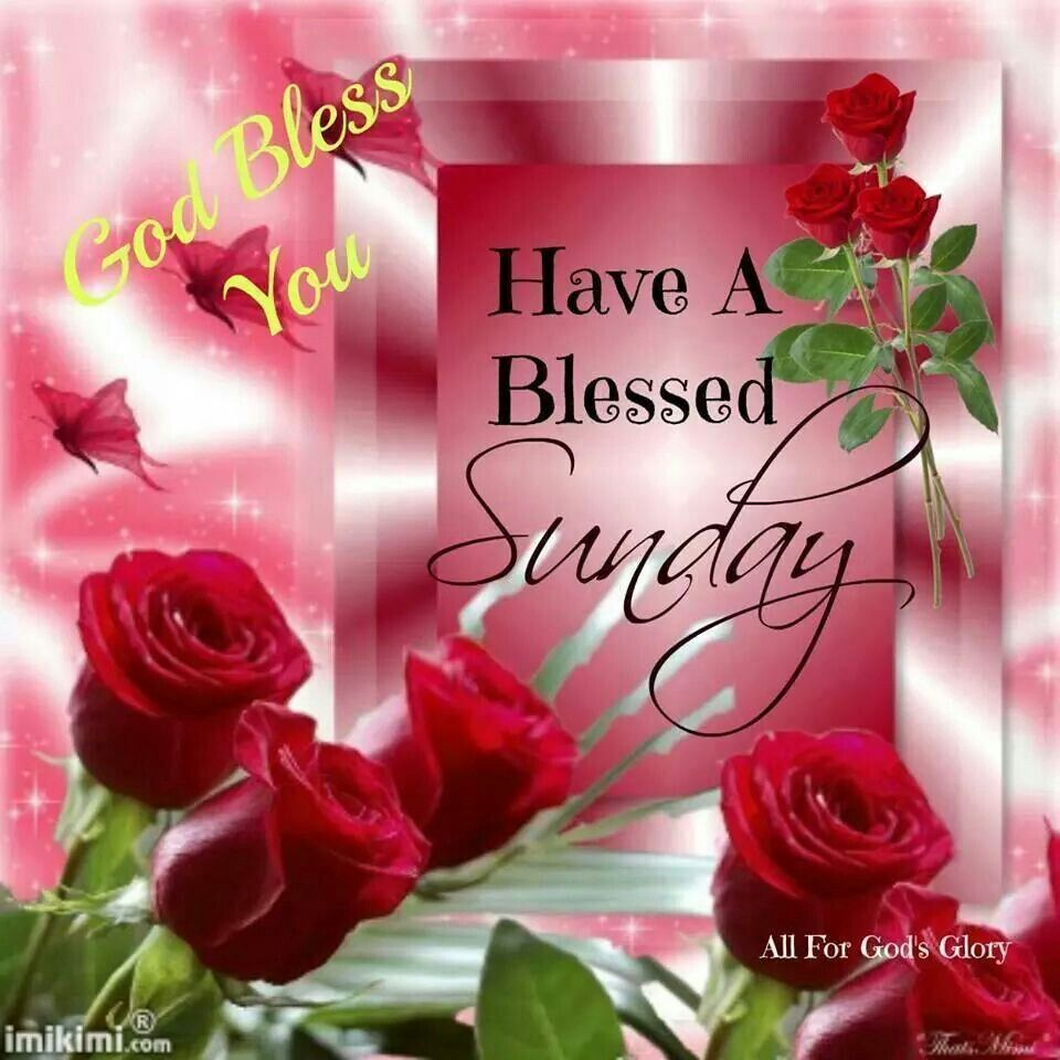 Good Morning Sunday Blessing Images – VisitQuotes