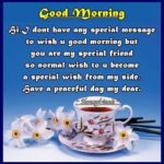 Good Morning To A Special Friend Quotes Facebook