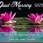 Good Morning Wishes To Sister Facebook
