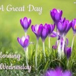 Good Morning Wishes Wednesday Twitter