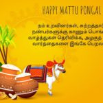Happy Mattu Pongal Images In Tamil Twitter
