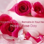 Happy Rose Day Quotes For Husband Pinterest