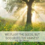 Harvest Festival Quotes Tumblr