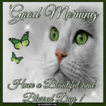 Have A Beautiful Blessed Day