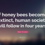 Honey Bee Quotes By Albert Einstein