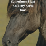 Horse Therapy Quotes