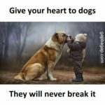 Kids And Animals Quotes Pinterest