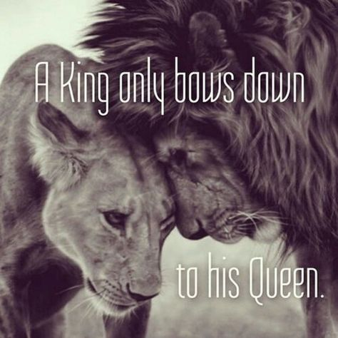 Lion King And Queen Quotes Tumblr