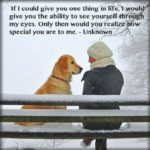 Live Life Like A Dog Quote