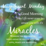 Monday Morning Quotes And Sayings Pinterest