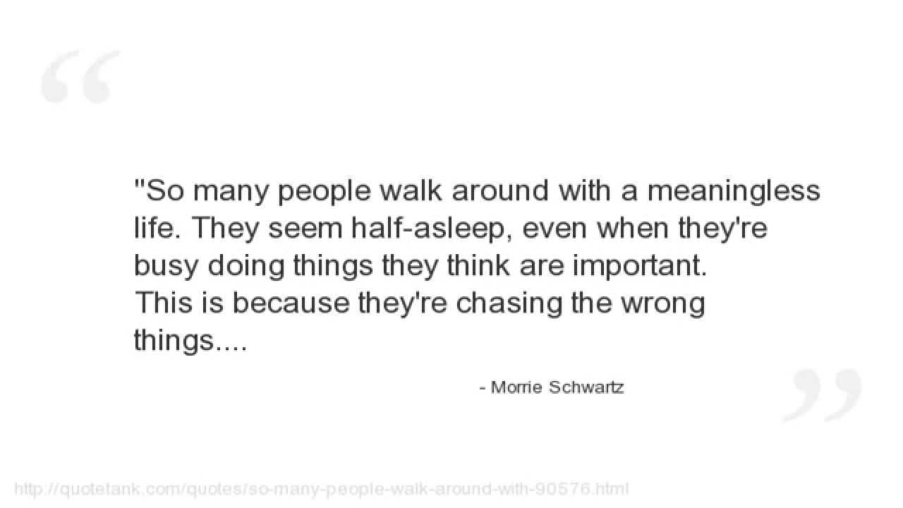Morrie Quotes