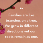 Our Growing Family Quotes
