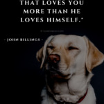 Pet Dog Quotes Tumblr