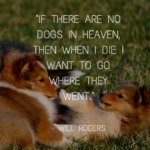 Quotes About Dogs And Friendship Pinterest