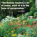 Quotes About Planting Vegetables Pinterest
