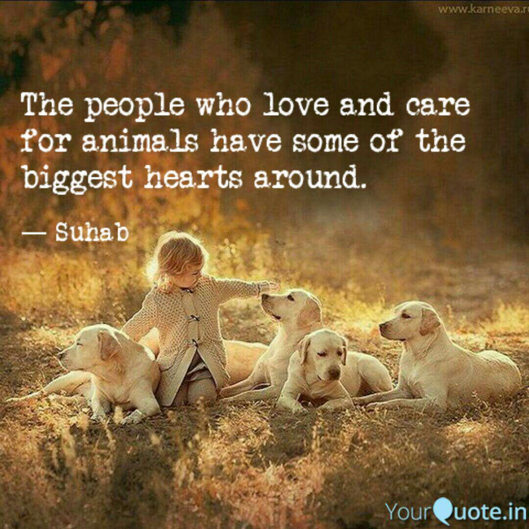Quotes About Taking Care Of Animals Twitter