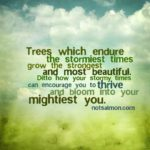 Quotes About Trees And Strength Facebook