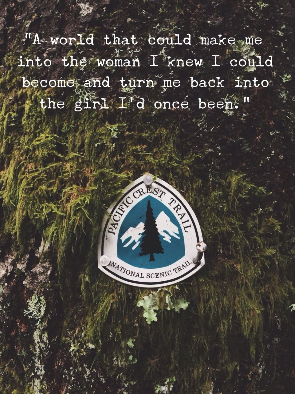 Quotes From Wild Cheryl Strayed Facebook